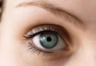 oko-skora